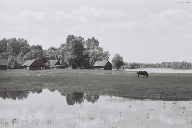 may-afternoon-vjerasnitsa-2010
