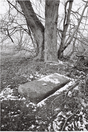 1.Tombstone at Site of the Former Benedictine Monastery, Haradzishcha 2016, 2016093-25A (000057