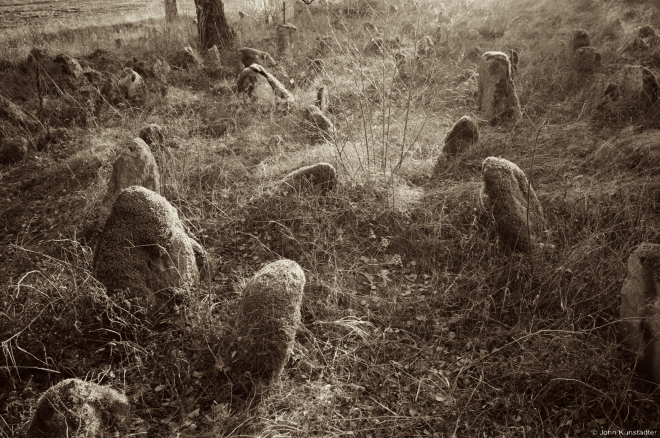 Tombstones, Babtsy Cemetery 2014, 1a.2014401-08(2)