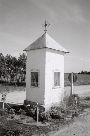 20a.Roadside Shrine at Southern Edge of Sjaljets (Vishnjeva Local Council, Smarhon' District) 2017, 2017135a-5A (000041