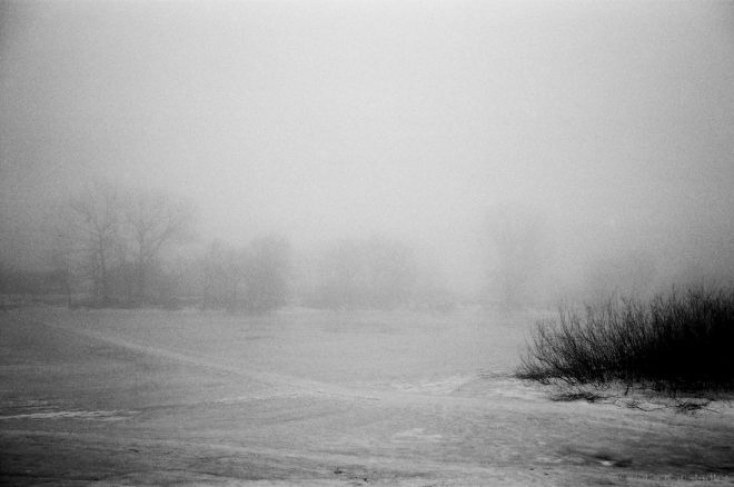 winter-fog-on-the-river-chakva-rubjel-2011-2011014-28
